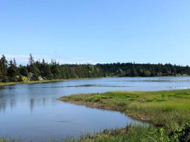 McNabs Island 初上陸!大自然の中のハイキング【ハリファックス観光】