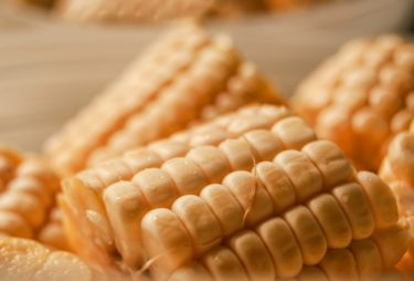 焼きトウモロコシの作り方【海外ではトウモロコシが激安なので食べ放題です】