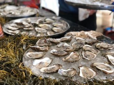 ハリファックスNo1オイスターフェス【Halifax Oyster Festival】